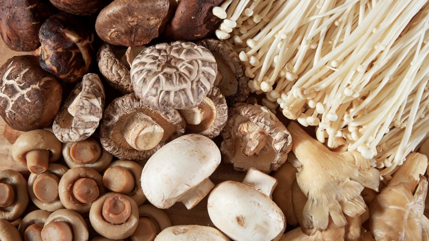 Mushrooms of several qualities