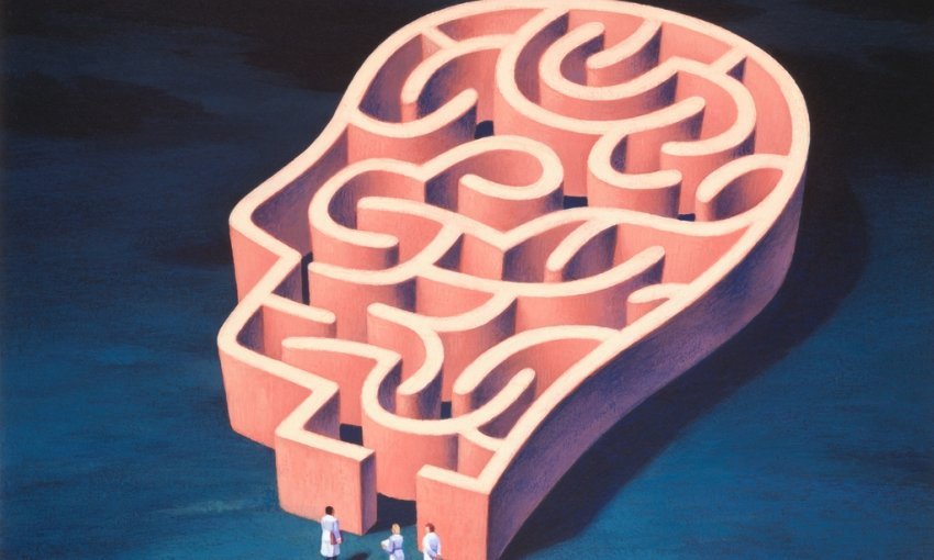 brain as a maze